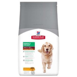 Hill's Science Plan Canine Perfect Weight Adult Large